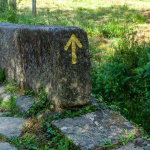 Camino de Santiago - PGW