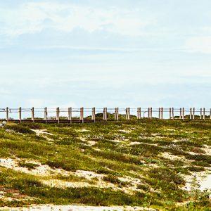 Banner Viana Coastal