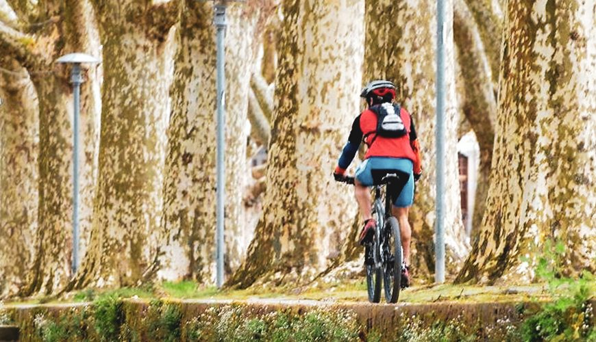 Way to Santiago - Camino de Santiago