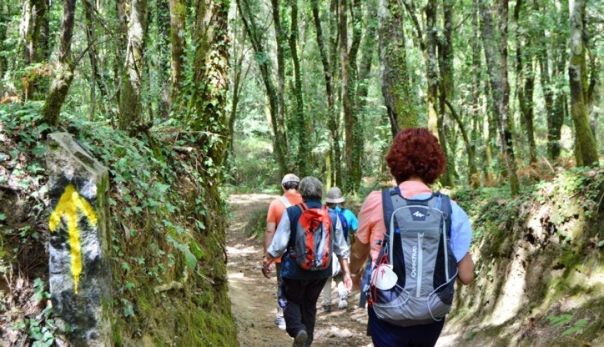Way To Santiago - Camino de Santiago by PGW